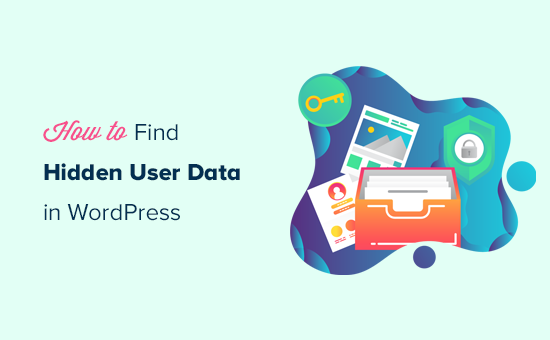 9 Tips to Find Hidden WordPress User Data to Grow Your Business
