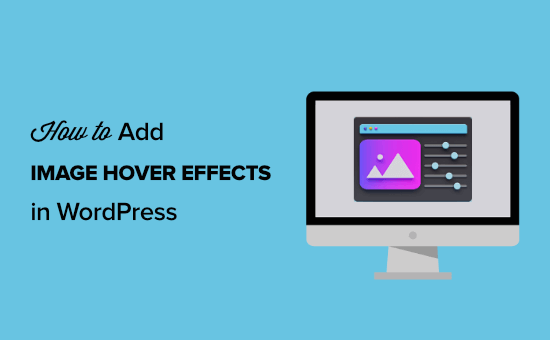 How to Add Image Hover Effects in WordPress (Step by Step)